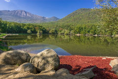 Mountain lake in the woods. And blue sky stock image