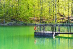 Mountain lake in the woods in the sunset, Romania Royalty Free Stock Photo