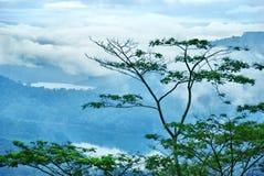 Mountain lakes of Ceylon Royalty Free Stock Image