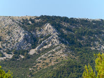 Mountain landscape. Mountain covered with pine trees against blue sky Royalty Free Stock Photo