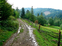 Mountain landscape. Ukraine,Karpaty,August, 2009. Mountain landscape, a road got wet from a rain Stock Photo