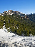 Mountain Landscape. In winter, with the snow covering the peaks Royalty Free Stock Photo