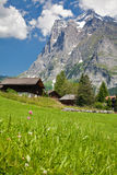 Mountain landscape. With green grass, houses, beautiful sky royalty free stock photos