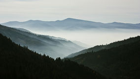 Mountain landscape. Mystic valley covered with fog Royalty Free Stock Image