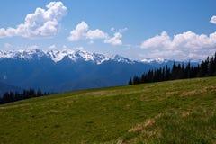 Mountain Landscape. Hurricane Ridge, Olympic National Park, Washington, USA Royalty Free Stock Photography