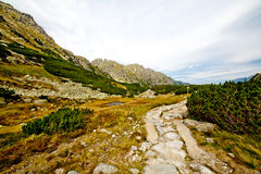 Mountain landscape. Summer mountain landscape in the Polish Tatry stock photo
