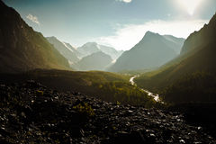 Altai mountain landscape Stock Image