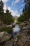 Mountain Landscape. Landscape shot in Sequoia and Kings Canyon National Park California Royalty Free Stock Images