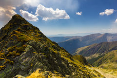 Mountain landscape. In a  summer day Stock Images