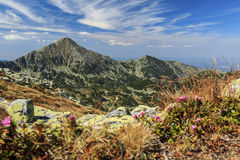 Mountain landscape. Beautiful Retezat mountain summer landscape Stock Photo