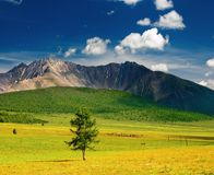 Mountain landscape Royalty Free Stock Photo