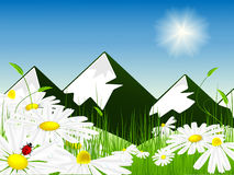 Mountain landscape. Vector illustration of bright meadow over mountain view Stock Images