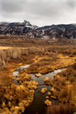 Mountain landscape. In northern Wyoming Royalty Free Stock Photography