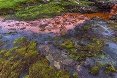 Mountain landscape along the National tourist route Aurlandstjel Stock Photos