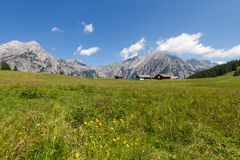 Mountain landscape in the Alps with flowers meadow. Austria, Walderalm Stock Photos