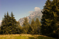 Mountain. Landscape of mountain alps in Italy Royalty Free Stock Photo