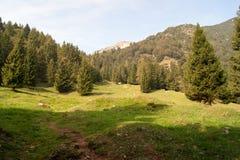 Mountain. Landscape of mountain alps in Italy Royalty Free Stock Photos