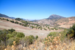Mountain landscape in Andalusia Stock Photography