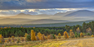 Mountain Landscape in Autumn Royalty Free Stock Photography