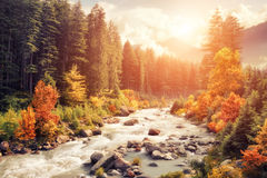 Mountain landscape in autumn Royalty Free Stock Photos