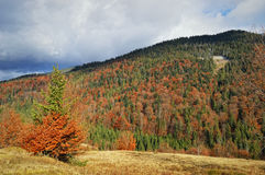Mountain landscape. Autumn mountain landscape in Carpathian mountain range, Ukraine Stock Photo