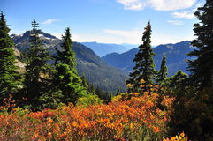 Mountain landscape with autumn colorsAssignment. Mountain landscape with autumn colors. Green cedar trees, red colored bushes, crisp, fresh, mountain air stock image