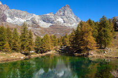 Mountain landscape in autumn at the foot of Matterhorn Stock Images