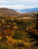 Mountain landscape. autumn forest Stock Photo