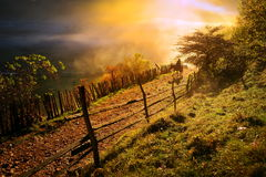 Mountain landscape with autumn morning fog at sunrise Stock Photography