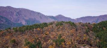 Mountain landscape in autumn royalty free stock photo