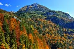 Mountain landscape in autumn season Royalty Free Stock Photo
