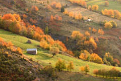 Mountain landscape in beautiful fall environment