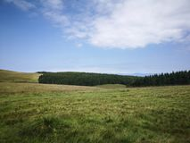 Mountain landscape. Beautiful meadow and mountain landscape in Romania Royalty Free Stock Image
