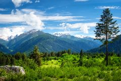 Mountain landscape. Beautiful view on mountains royalty free stock images