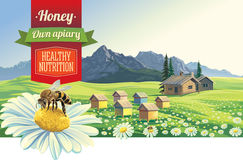 Mountain landscape with a bee. Mountain landscape with a bee and apiary, village in background. Vector objects on separate layers for easy to work with them Royalty Free Stock Images