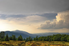 Mountain landscape with blueberry fields in the evening. Royalty Free Stock Photo