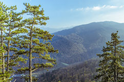 Mountain landscape in Brasov county Stock Photos