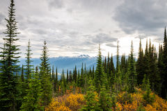 Mountain landscape in Canada Stock Images