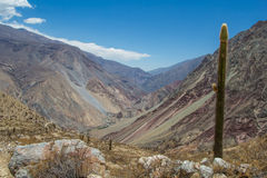 Mountain landscape of the canyon Cotahuasi Royalty Free Stock Image