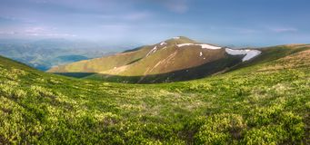 Mountain landscape of the Carpathian Gorgany, Ukraine. Mountain landscape with hiking trail and view of beautiful ridge, Carpathian mounts, Gorgany, Ukraine royalty free stock photography