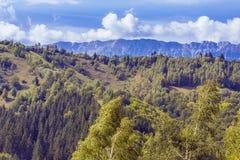 Mountain landscape in the Carpathians Stock Photos