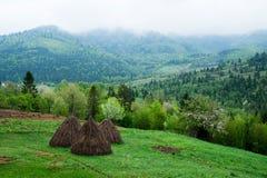 Mountain landscape. Carpathians. Royalty Free Stock Image