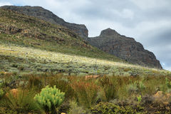 Mountain landscape in Cederberg Royalty Free Stock Image