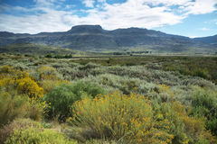 Mountain landscape in Cederberg Stock Photos