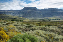 Mountain landscape in Cederberg Royalty Free Stock Photo