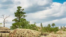 Mountain Landscape with Clouds. Mountain Landscape, Running clouds with mountain and trees, TimeLapse stock footage