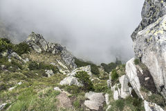 Mountain landscape on a cloudy day with rain clouds. Tatra Mountains. Stock Photography
