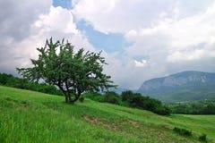 Mountain landscape with cloudy sky. Stock Photos