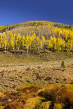 Mountain landscape in Colorado Stock Photo