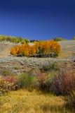 Mountain landscape in Colorado Stock Image